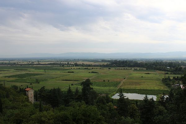 View from winery terrace